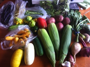 Our first CSA haul
