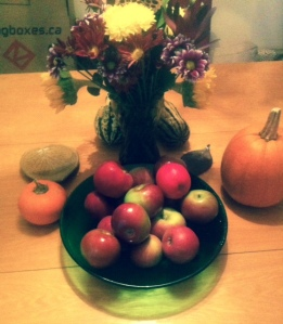 Orchard apples, patch pumpkins, pretty flowers.